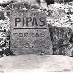 001 Pipás-forrás 1971_eredmény