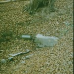 002 Szent Imre-forrás 1988_eredmény