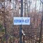 Koponya-kút tisztítás_12